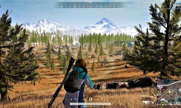 More Information On PUBG PC Update 27a: Wildlife And Mobile Phones